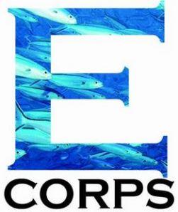 E-corps fish small