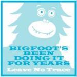 bigfoot20300