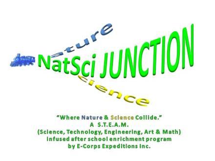 NatSciJunc