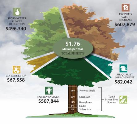 tree-chart