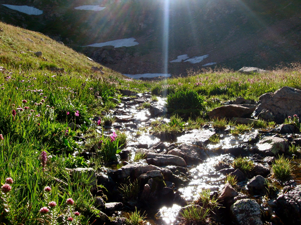 10 Reasons Why You Feel So Good in Nature » EcoWatch