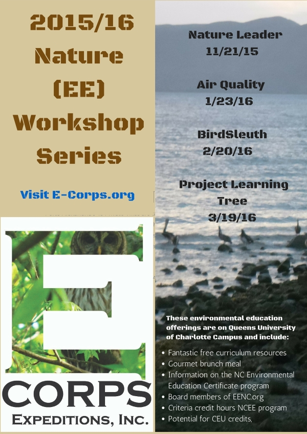Workshop Series (1)