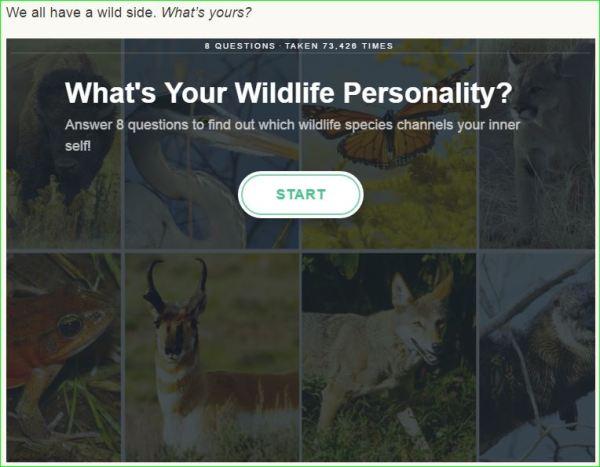 Wildlifequiz